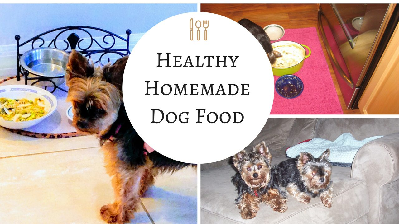 How to Make Homemade Dog Food – Recipe and Tips